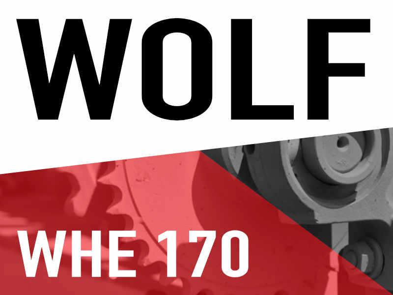 Wolf WHE 170